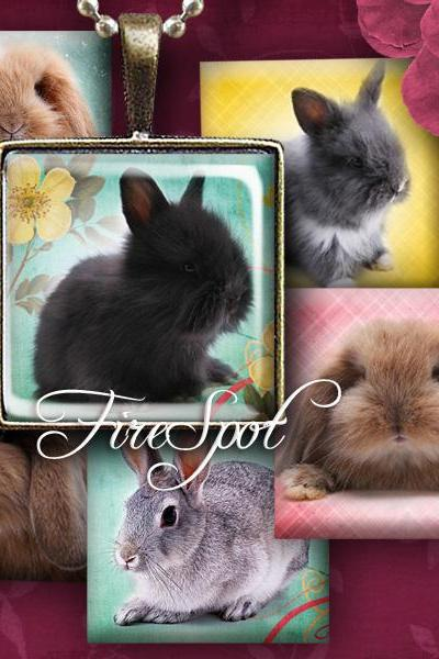Vintage Pet Rabbit,Animal- Digital Collage Sheet ,1 inch,25mm, 20mm Square animal printable images, Pendants,Scrapbooking,Bottlecaps