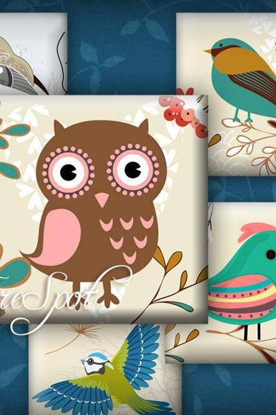 Vintage Birdie,owl- Digital Collage Sheet 1.5 inch, 1 inch,25 mm, 20 mm Square printable images for Pendants,Scrapbooking,Bottlecaps
