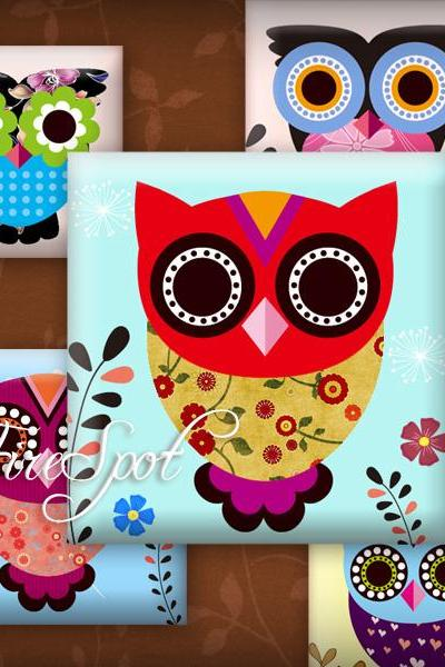 Multicolour Owl,Bird-Digital Collage Sheet 1.5 inch,1 inch,25 mm, 20 mm Square printable images for Glass Pendants,Scrapbooking,Bottlecaps