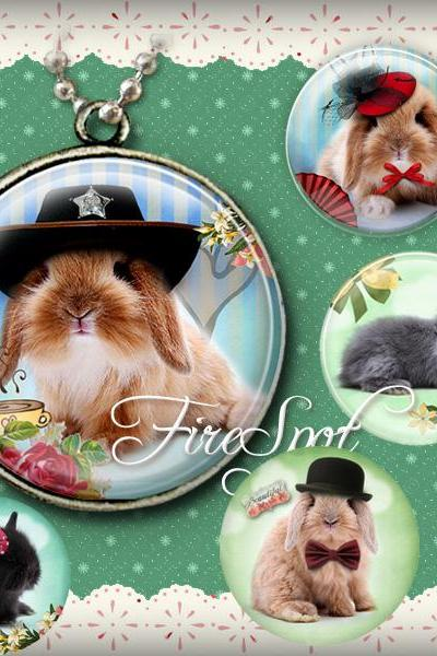 Bunny with the hat,Rabbit-Digital Collage Sheet 20 mm, 18 mm, 16 mm, 14 mm, 12 mm Round printable images for Glass Pendants Scrapbooking