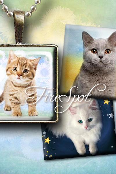 Cat - Digital Collage Sheet 1.5 inch,,1 inch,25mm, 20mm Square. Animal,printable images for Pendants, Ring,Charms,Cat Jewelry,glass Pendant
