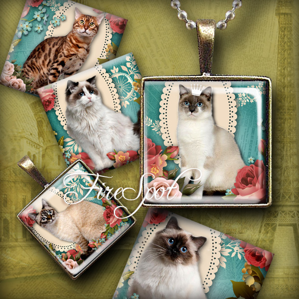 Vintage Flowers Pet Cat- Digital Collage Sheet 1.5 inch,1 inch,25mm, 20mm Square printable images for Glass Pendants Scrapbooking Bottlecaps