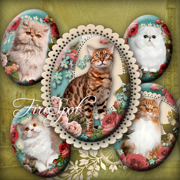 Vintage Flowers Pet Cat- Digital Collage Sheet 30x40 mm,22x30 mm,18x25 mm,13x18 mm Oval animal printable images for Pendants Scrapbooking