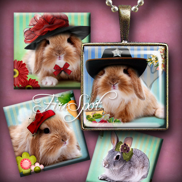 Bunny with the hat, Rabbit- Digital Collage Sheet 1.5 inch,1 inch,25 mm,20 mm Square printable images, Glass Pendant,Scrapbooking,Bottlecaps