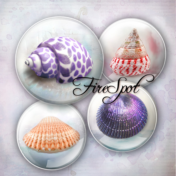 Shell Conch Starfish animals - Digital Collage Sheet 20mm, 18mm, 16mm, 14mm, 12mm circle.Glass Pendant.Bottlecaps,Scrapbooking